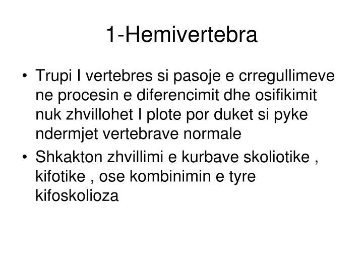 1-Hemivertebra