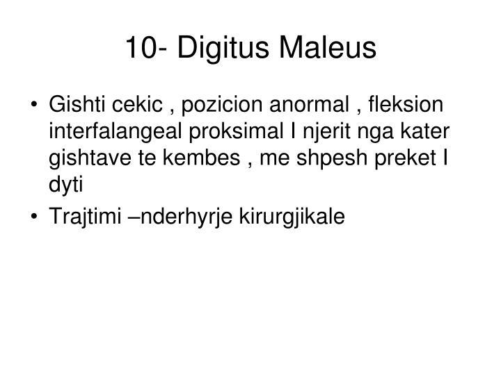 10- Digitus Maleus