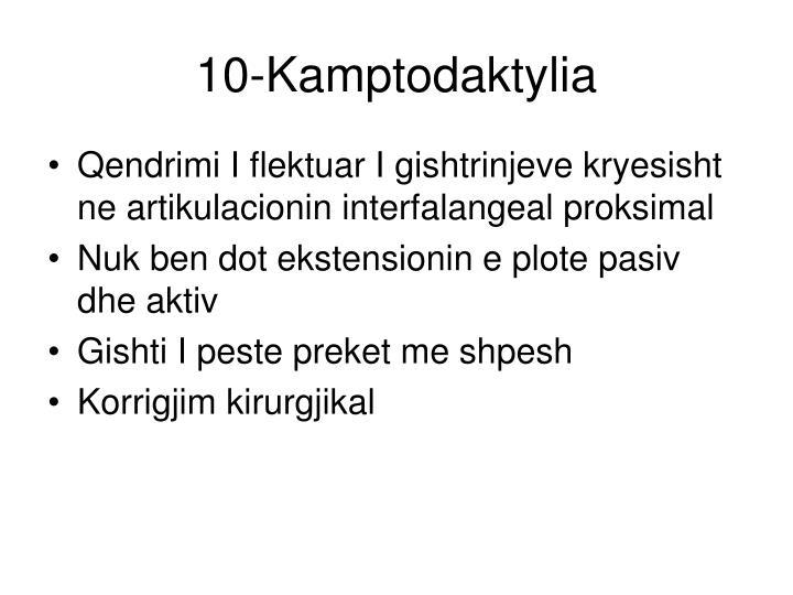 10-Kamptodaktylia