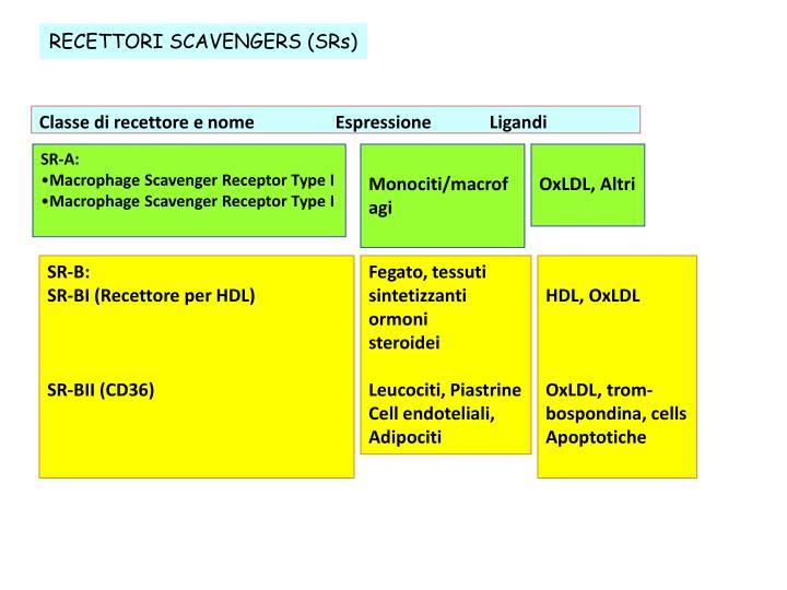 RECETTORI SCAVENGERS (SRs)