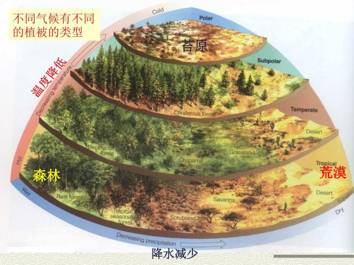 不同气候有不同的植被的类型