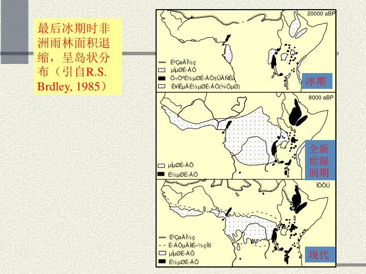 最后冰期时非洲雨林面积退缩,呈岛状分布(引自