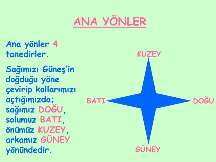 ANA YÖNLER