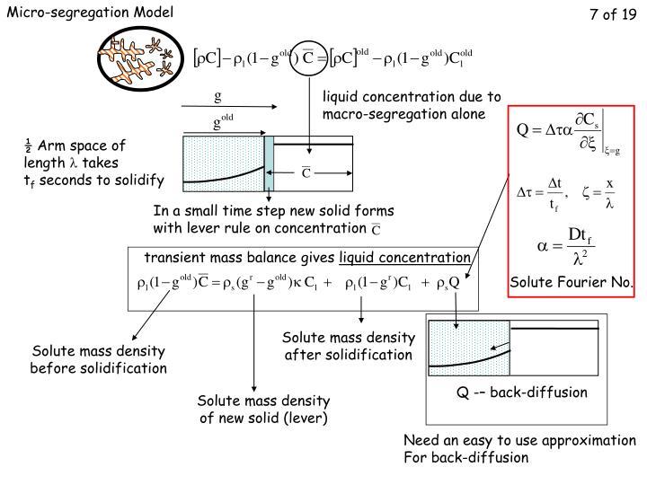 Micro-segregation Model