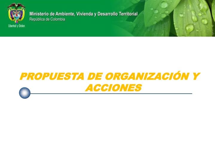 PROPUESTA DE ORGANIZACIÓN Y ACCIONES