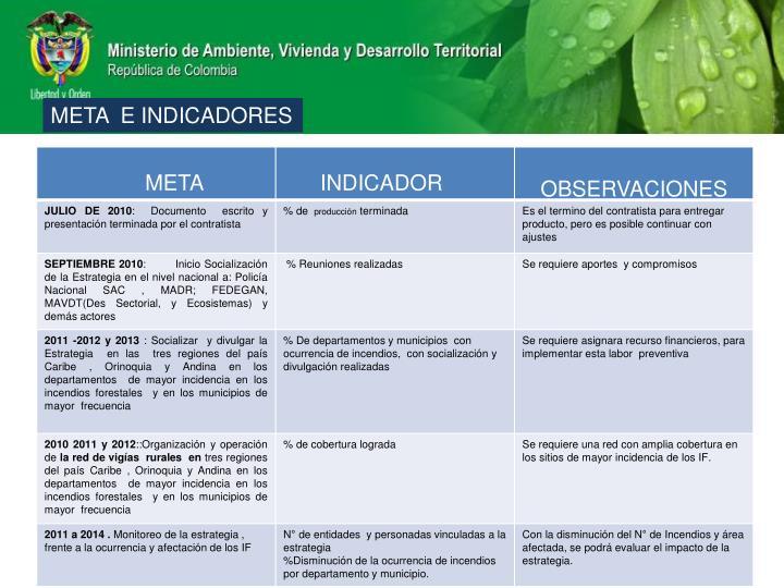 META  E INDICADORES