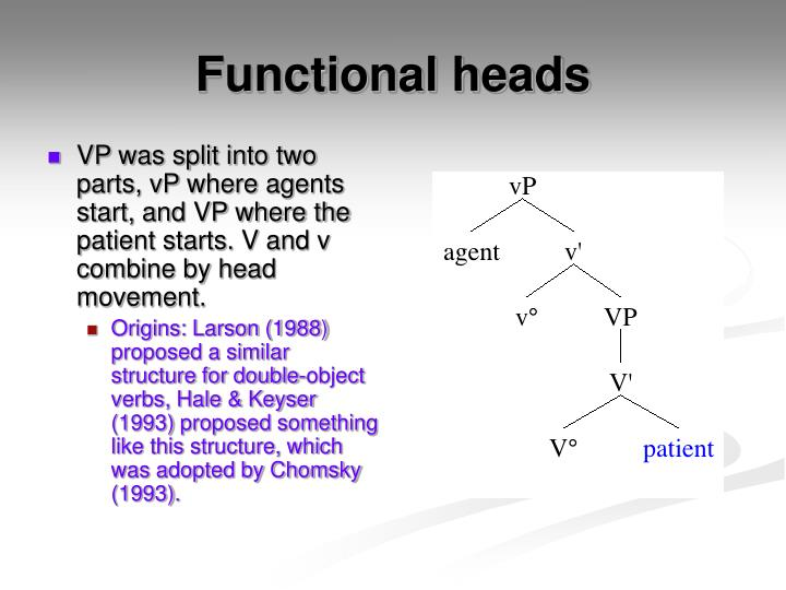 VP was split into two parts, vP where agents start, and VP where the patient starts. V and v combine by head movement.