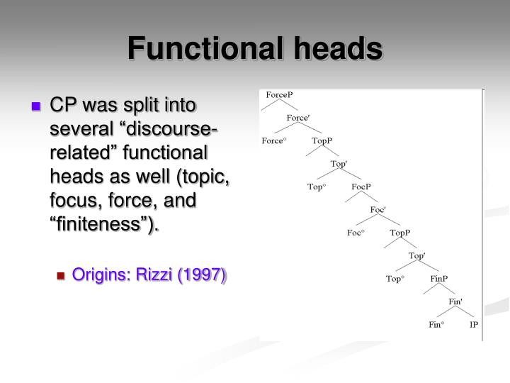 "CP was split into several ""discourse-related"" functional heads as well (topic, focus, force, and ""finiteness"")."