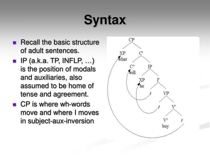 Recall the basic structure of adult sentences.