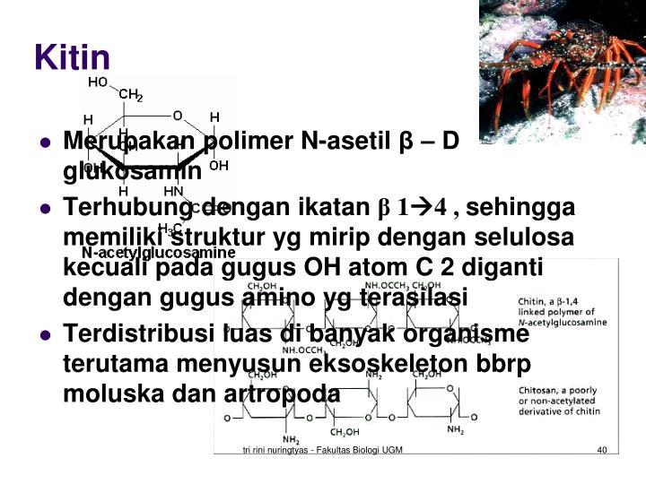 Kitin