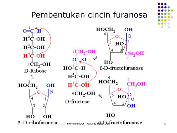 Pembentukan cincin furanosa