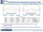 flexible momentum compaction symmetric cells