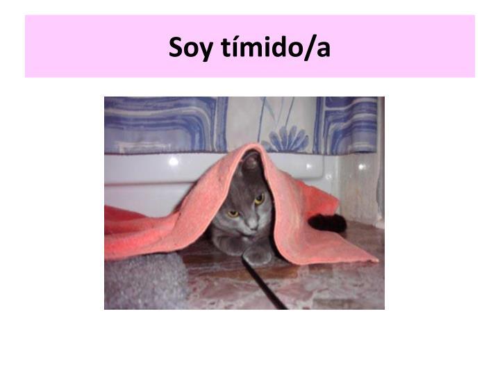 Soy tímido/a