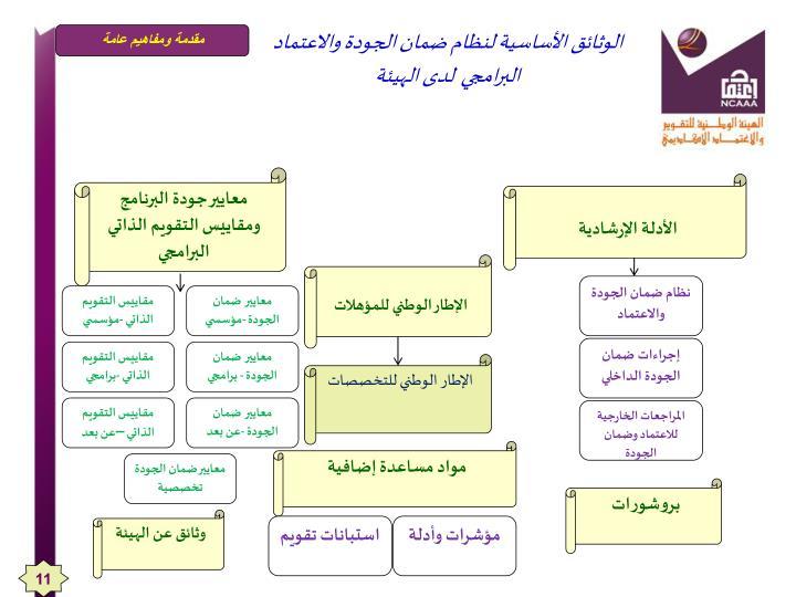 الوثائق الأساسية لنظام ضمان الجودة والاعتماد البرامجي  لدى الهيئة