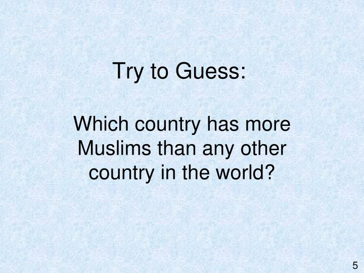 Try to Guess: