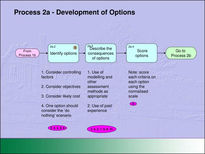Process 2a - Development of Options