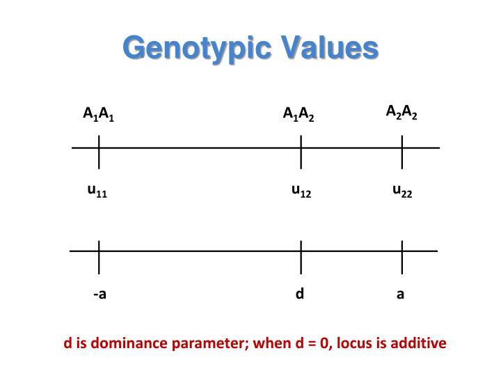 Genotypic Values
