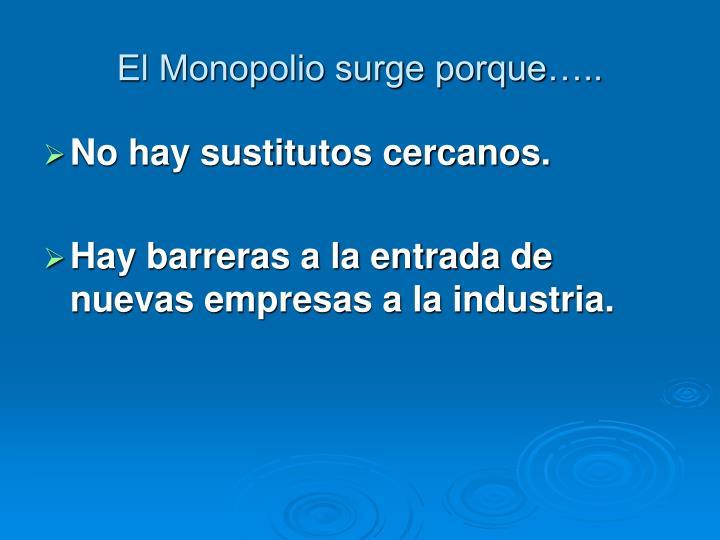 El Monopolio surge porque…..