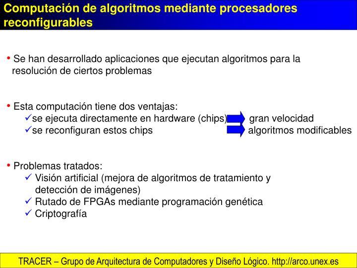 Computación de algoritmos mediante procesadores reconfigurables