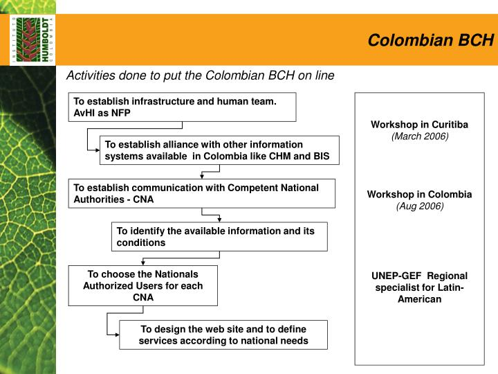 Colombian BCH