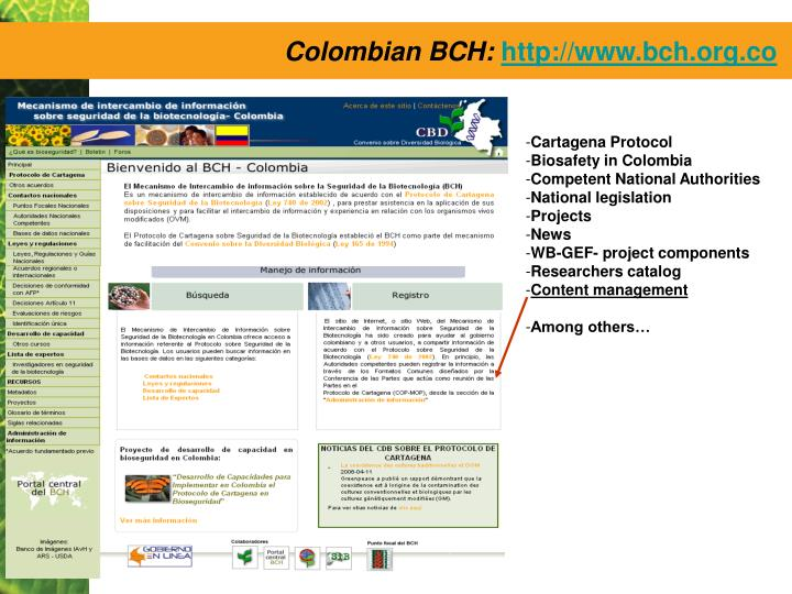 Colombian BCH: