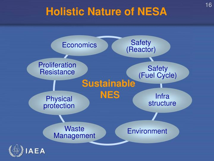 Holistic Nature of NESA