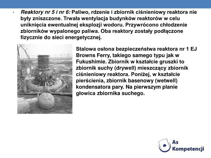 Reaktory nr 5 i nr 6: