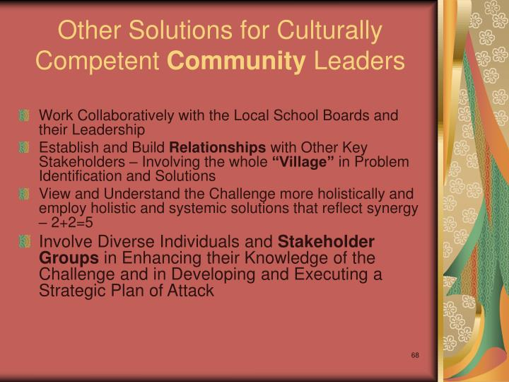 Other Solutions for Culturally Competent