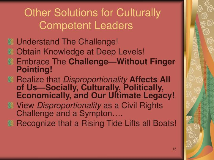 Other Solutions for Culturally Competent Leaders