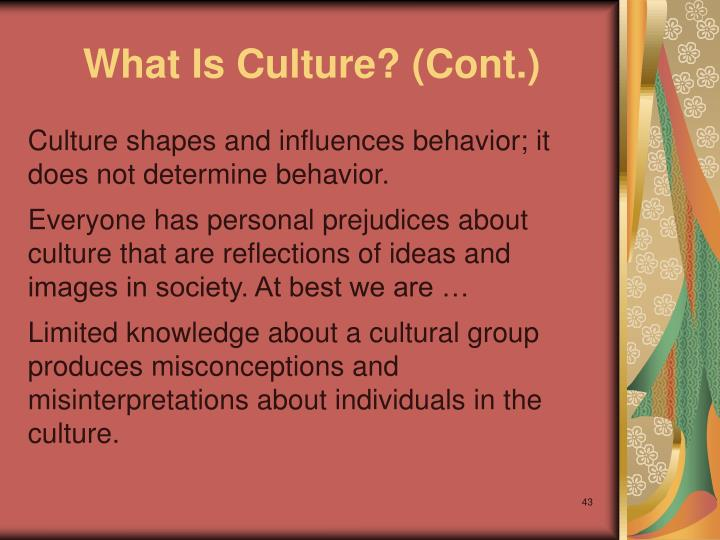 What Is Culture? (Cont.)