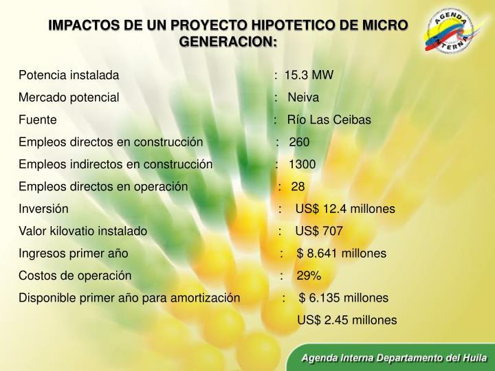 IMPACTOS DE UN PROYECTO HIPOTETICO DE MICRO GENERACION:
