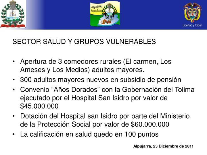 SECTOR SALUD Y GRUPOS VULNERABLES