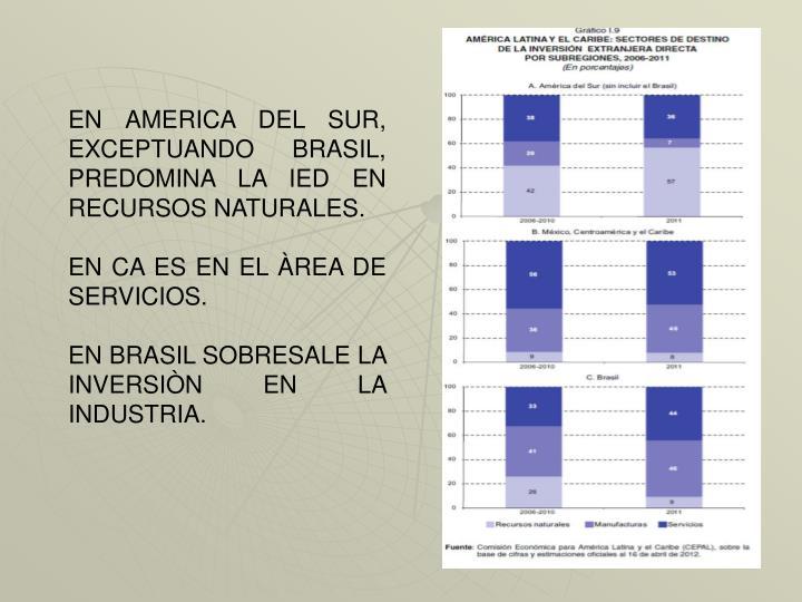 EN AMERICA DEL SUR, EXCEPTUANDO BRASIL, PREDOMINA LA IED EN RECURSOS NATURALES.