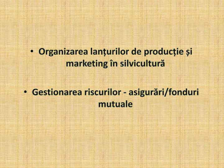 Organizarea