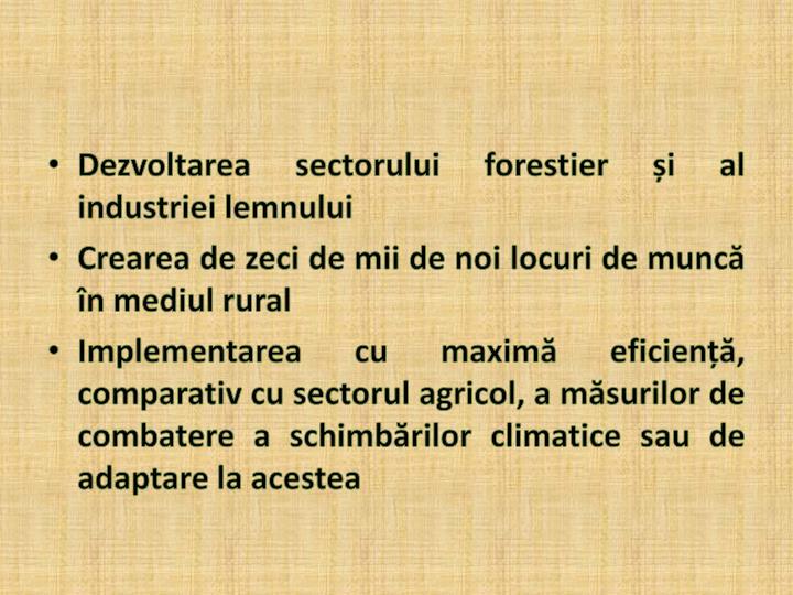 Dezvoltarea sectorului forestier și al industriei lemnului