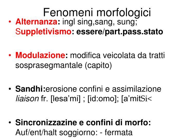 Fenomeni morfologici