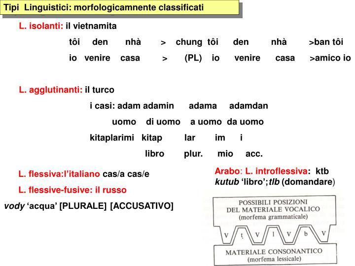 Tipi  Linguistici: morfologicamnente classificati
