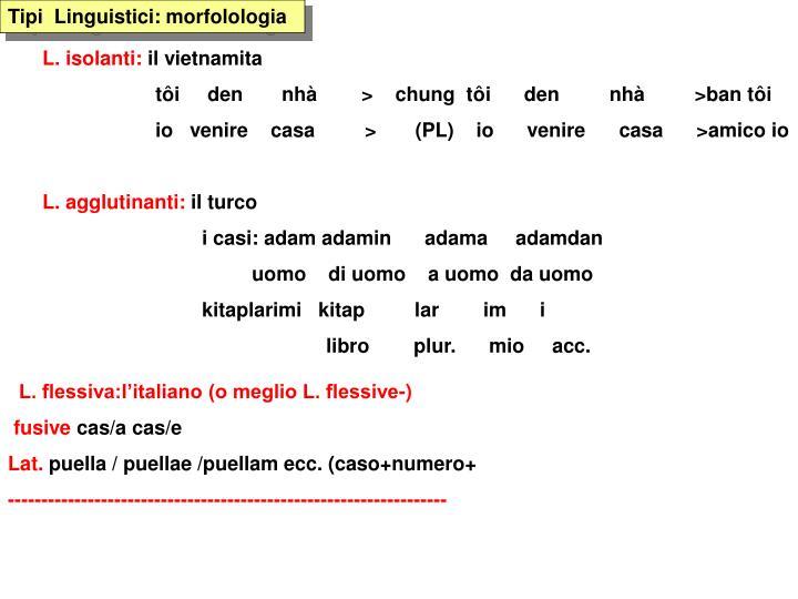 Tipi  Linguistici: morfolologia