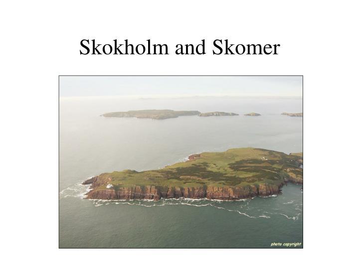 Skokholm and Skomer