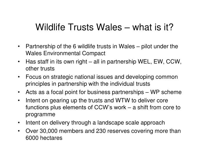 Wildlife Trusts Wales – what is it?