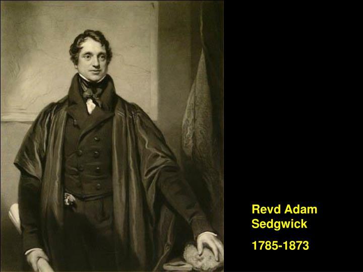 Revd Adam Sedgwick