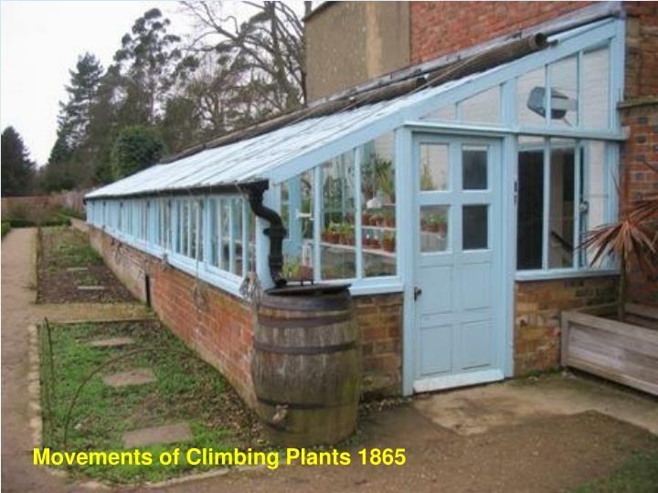 Movements of Climbing Plants 1865