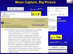 muon capture big picture