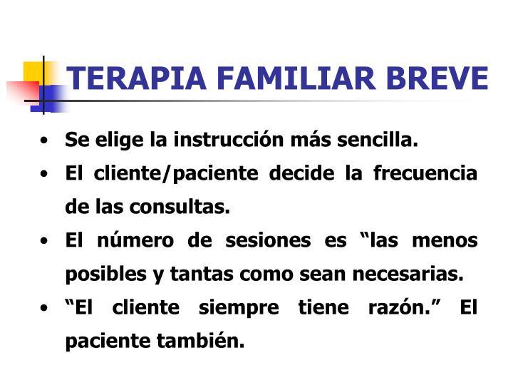 TERAPIA FAMILIAR BREVE