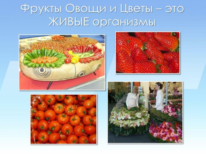 Фрукты Овощи и Цветы – это ЖИВЫЕ организмы
