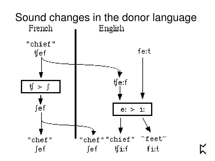 Sound changes in the donor language