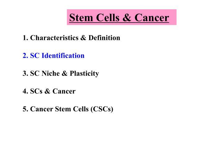 Stem Cells & Cancer