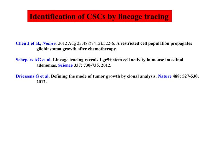 Identification of CSCs by lineage tracing