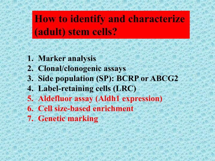 How to identify and characterize