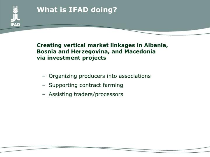 What is IFAD doing?